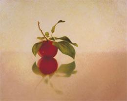 "fine art prints for sale: still life print \""Apple on Cherry\"" by Leah Kristin Dahlgren"